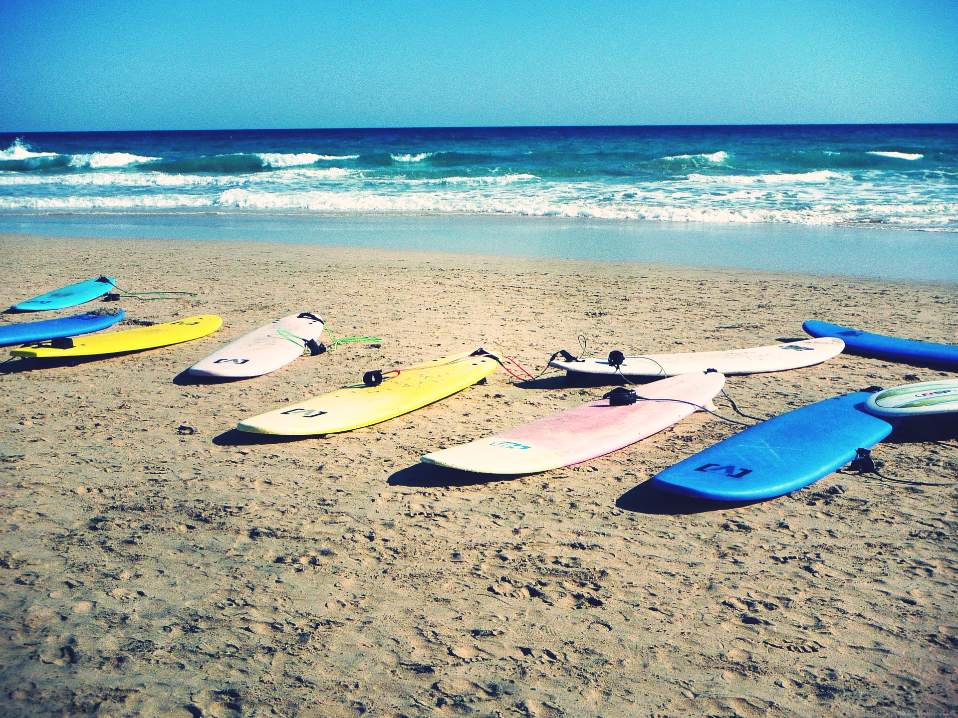 Location de surfs - école de Surf  - Anglet, Pays Basque